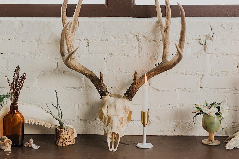skull as wedding decor